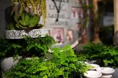 httpwww-kvetinyveronica-cz-dekorace-vnitrni