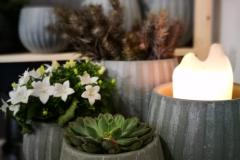 httpwww-kvetinyveronica-cz-kvetinarstvi-kladno-prodejna-10