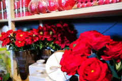 httpwww-kvetinyveronica-cz-kvetinarstvi-kladno-prodejna-5