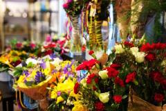 httpwww-kvetinyveronica-cz-rezane-kvetiny