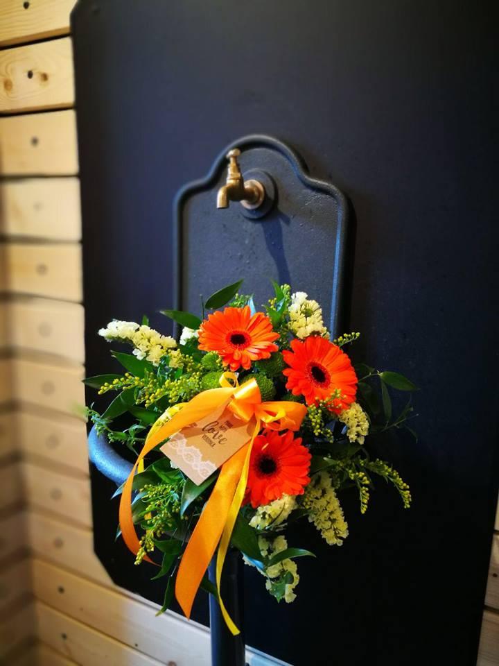 httpwww-kvetinyveronica-cz-jarni-kvetiny