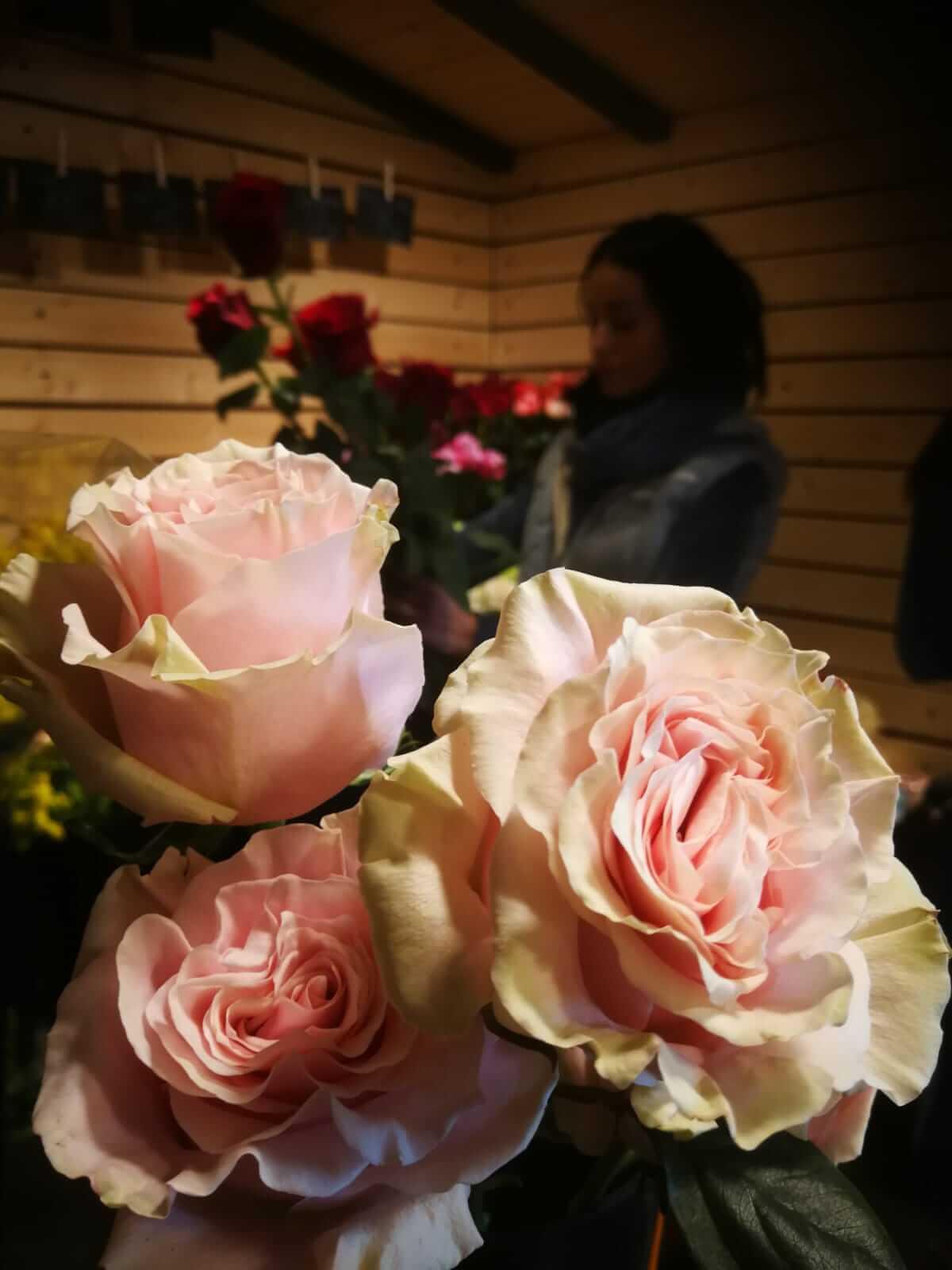 Kvetiny-Veronica-Kladno-7